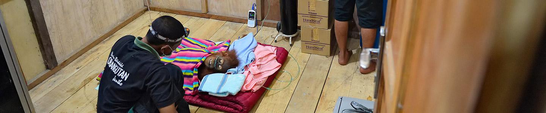 Critically Ill Sumatran Orangutan