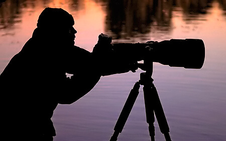 One To One Wildlife Photography
